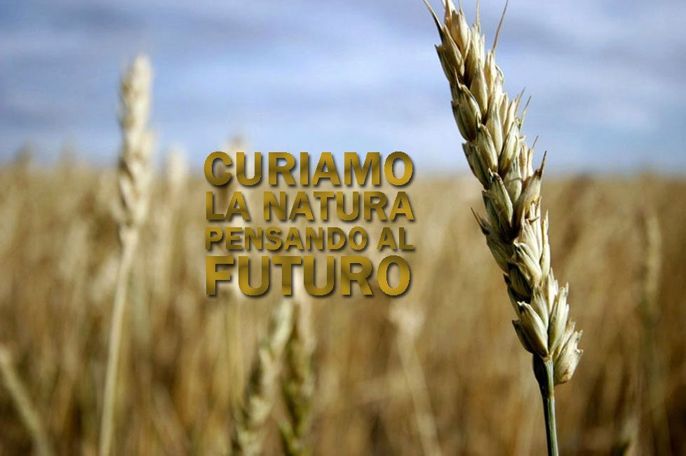 Green Chemical Slide Natura e Futuro